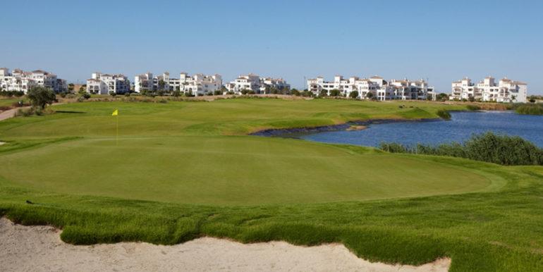 campo-de-golf-hacienda-riquelmo-golf-2-1600